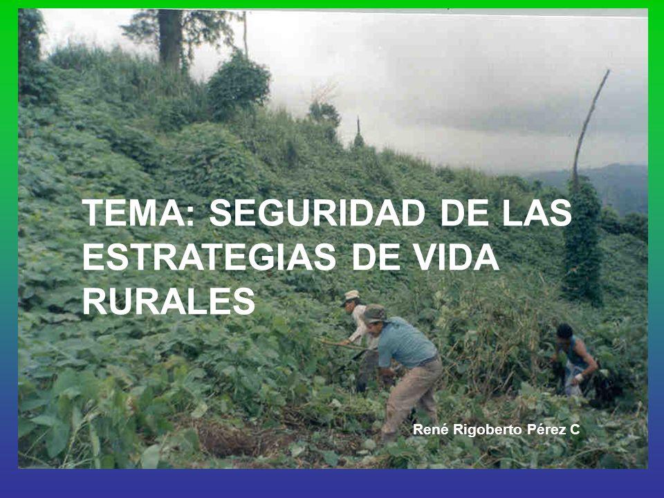 TEMA: SEGURIDAD DE LAS ESTRATEGIAS DE VIDA RURALES René Rigoberto Pérez C