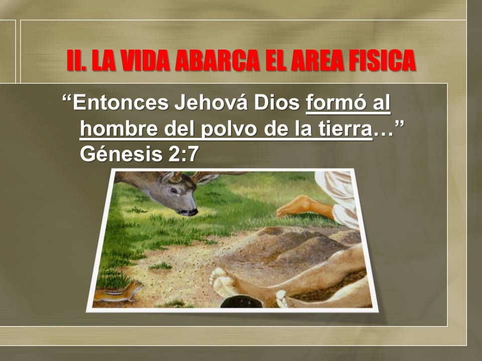 II. LA VIDA ABARCA EL AREA FISICA Entonces Jehová Dios formó al hombre del polvo de la tierra… Génesis 2:7