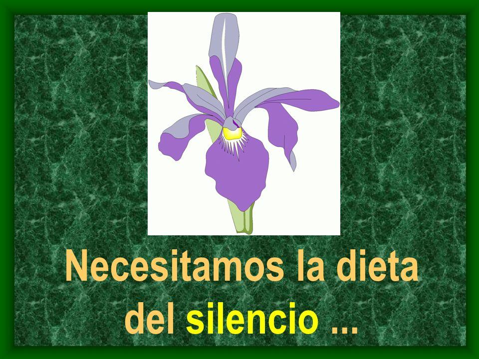Necesitamos la dieta del silencio...