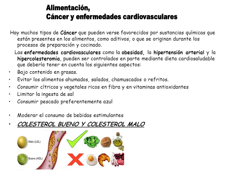 Hay muchos tipos de Cáncer que pueden verse favorecidos por sustancias químicas que están presentes en los alimentos, como aditivos, o que se originan