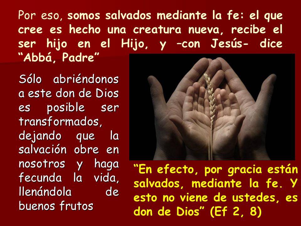 Por eso, somos salvados mediante la fe: el que cree es hecho una creatura nueva, recibe el ser hijo en el Hijo, y –con Jesús- dice Abbá, Padre Sólo ab