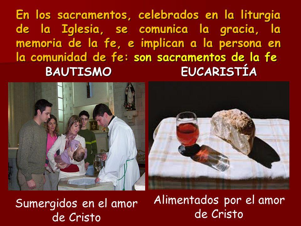 En los sacramentos, celebrados en la liturgia de la Iglesia, se comunica la gracia, la memoria de la fe, e implican a la persona en la comunidad de fe