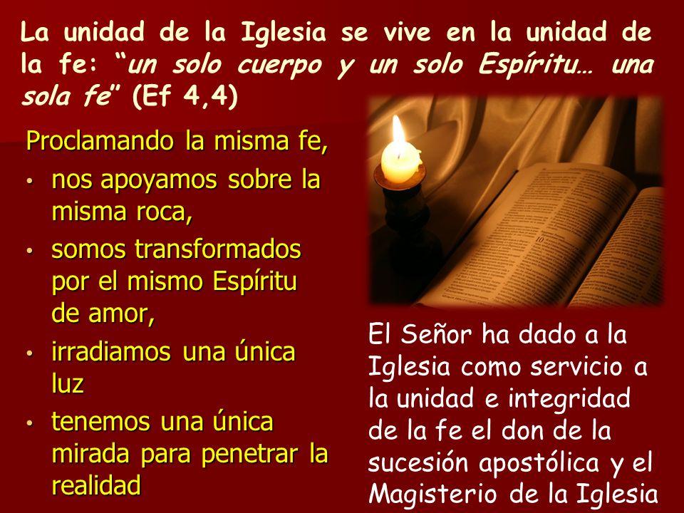 La unidad de la Iglesia se vive en la unidad de la fe: un solo cuerpo y un solo Espíritu… una sola fe (Ef 4,4) Proclamando la misma fe, nos apoyamos s