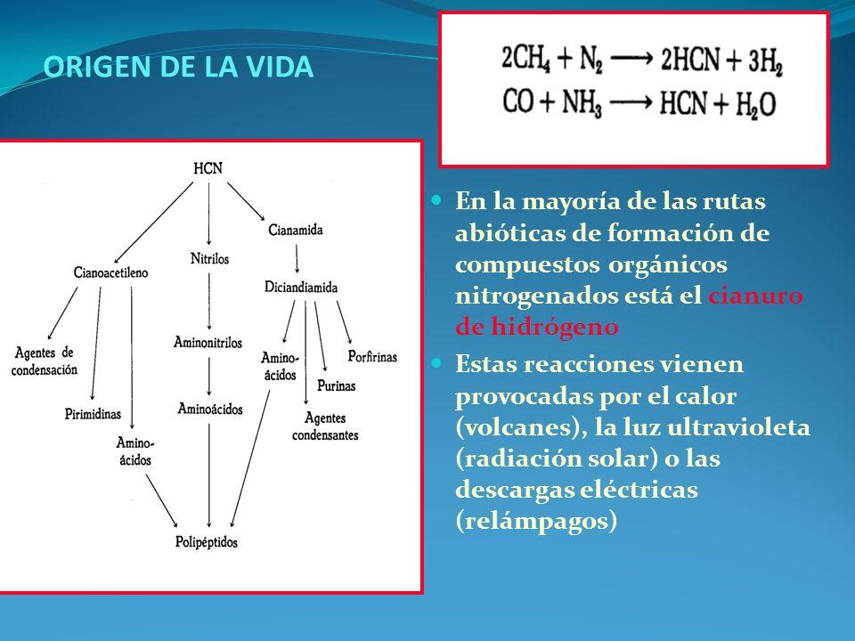 TAXONOMIA Y RELACIONES ENTRE ORGANISMOS VIVOS La taxonomía es la ciencia de la clasificación y está constituida por dos subdisciplinas la identificación y la nomenclatura La unidad taxonómica básica es la especie (colección de cepas) y los grupos de especies se reúnen en géneros (colección de especies que comparten propiedades principales que define dicho género) Luego se agrupan en familias que es el taxón superior que se usa de manera rutinaria en estudios taxonómicos de procariotas.