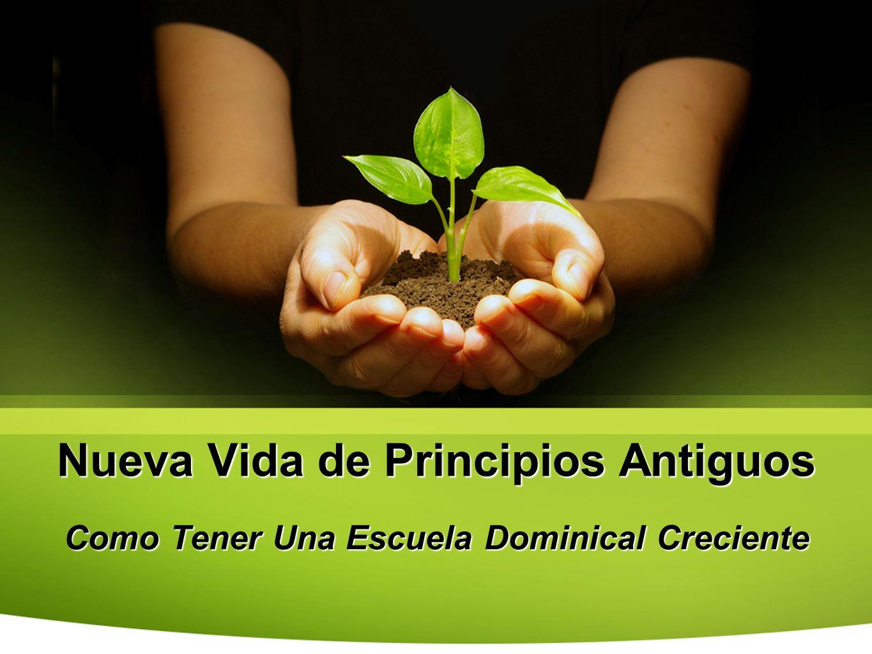 Nueva Vida de Principios Antiguos Como Tener Una Escuela Dominical Creciente