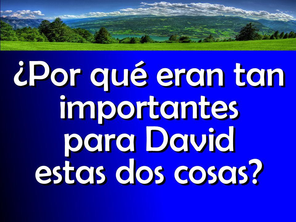 ¿Por qué eran tan importantes para David estas dos cosas?
