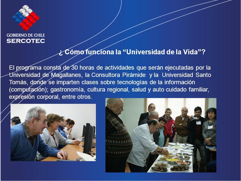 ¿ Cómo funciona la Universidad de la Vida? El programa consta de 30 horas de actividades que serán ejecutadas por la Universidad de Magallanes, la Con