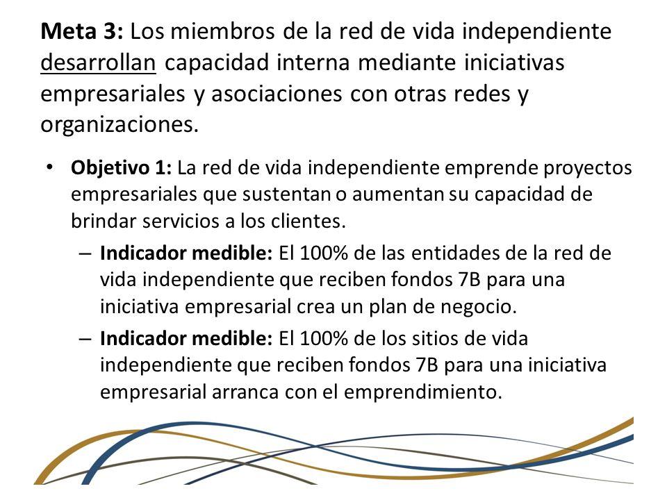 Meta 3: Los miembros de la red de vida independiente desarrollan capacidad interna mediante iniciativas empresariales y asociaciones con otras redes y organizaciones.