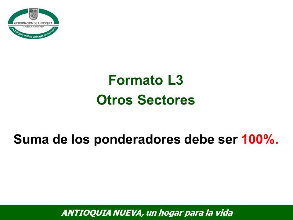 Formato L3 Otros Sectores Suma de los ponderadores debe ser 100%.