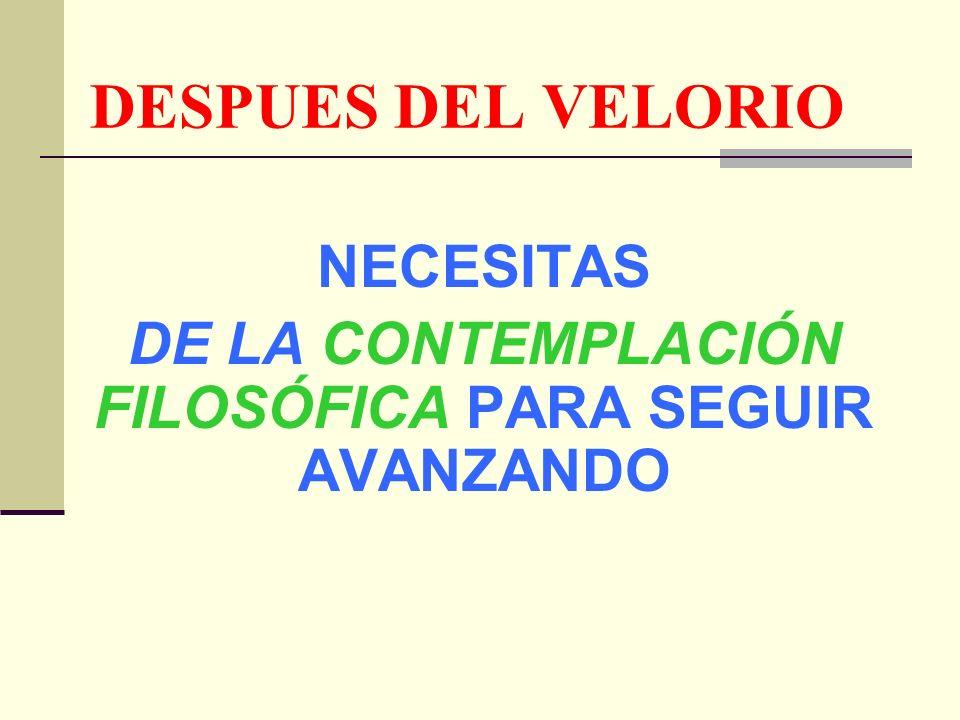 DESPUES DEL VELORIO NECESITAS DE LA CONTEMPLACIÓN FILOSÓFICA PARA SEGUIR AVANZANDO