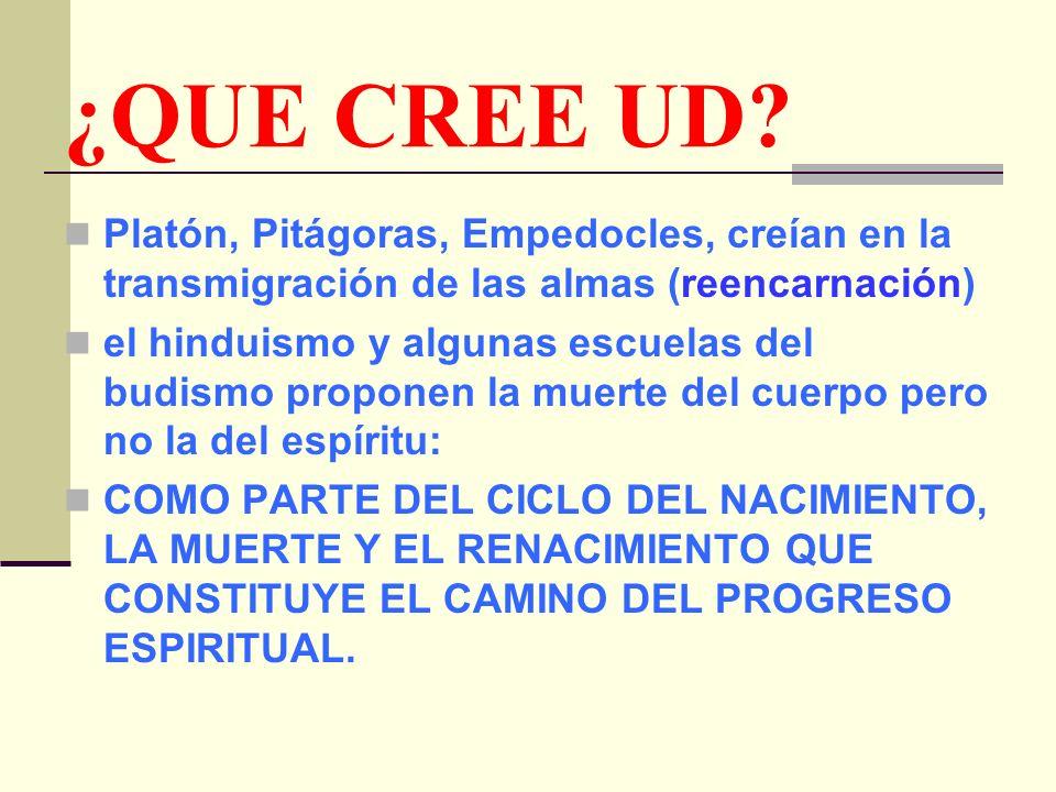 ¿QUE CREE UD.