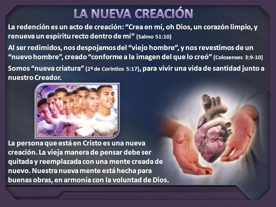 La redención es un acto de creación: Crea en mí, oh Dios, un corazón limpio, y renueva un espíritu recto dentro de mí (Salmo 51:10) Al ser redimidos,