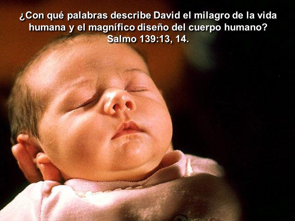 ¿Con qué palabras describe David el milagro de la vida humana y el magnífico diseño del cuerpo humano? Salmo 139:13, 14. ¿Con qué palabras describe Da