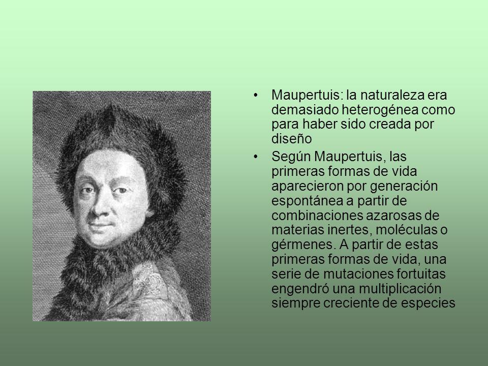 Maupertuis: la naturaleza era demasiado heterogénea como para haber sido creada por diseño Según Maupertuis, las primeras formas de vida aparecieron p