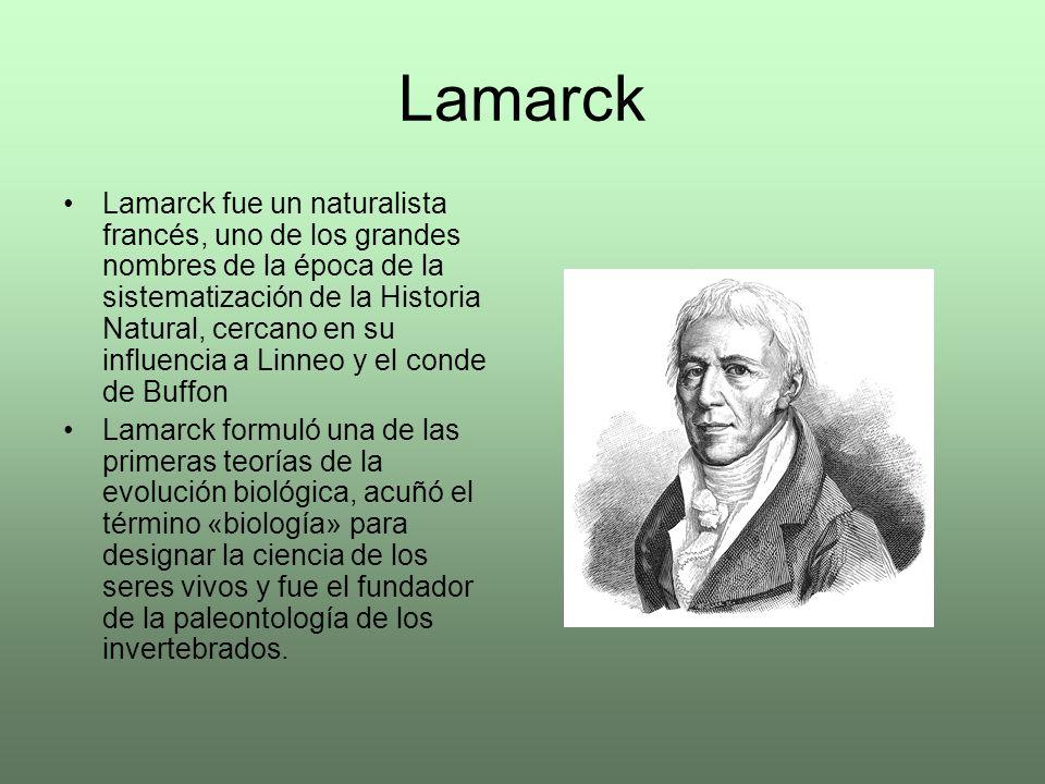 Lamarck Lamarck fue un naturalista francés, uno de los grandes nombres de la época de la sistematización de la Historia Natural, cercano en su influen