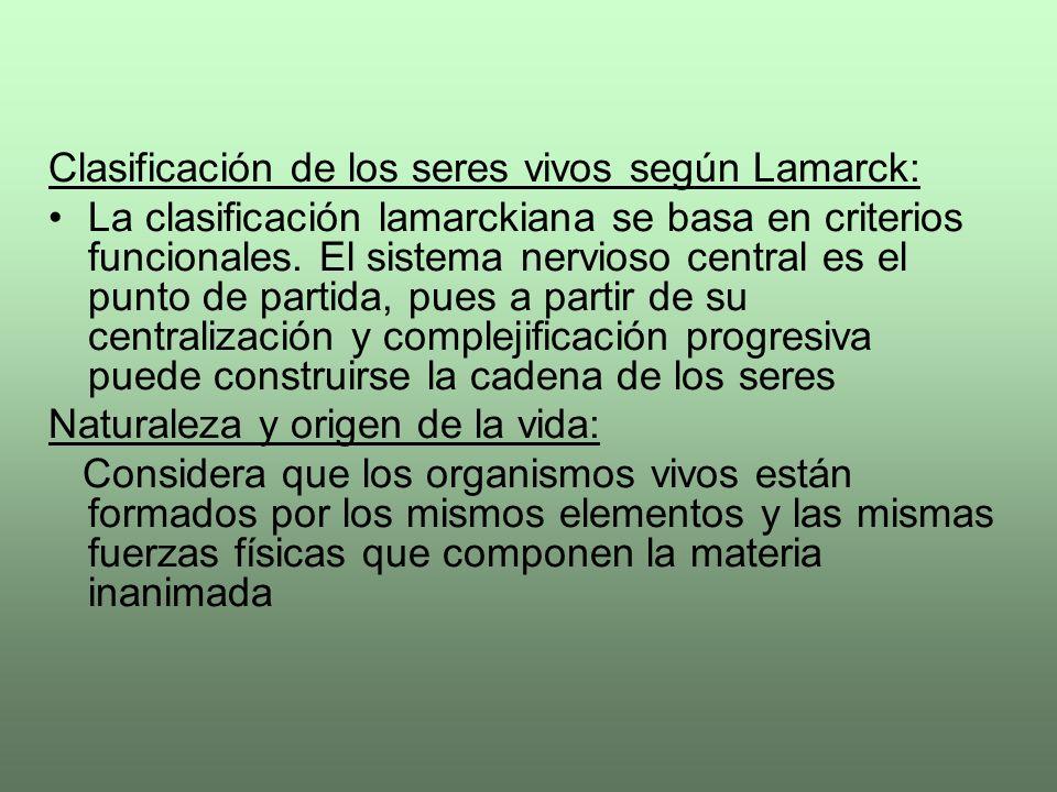Clasificación de los seres vivos según Lamarck: La clasificación lamarckiana se basa en criterios funcionales. El sistema nervioso central es el punto
