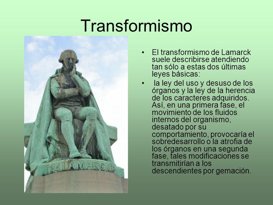 Transformismo El transformismo de Lamarck suele describirse atendiendo tan sólo a estas dos últimas leyes básicas: la ley del uso y desuso de los órga