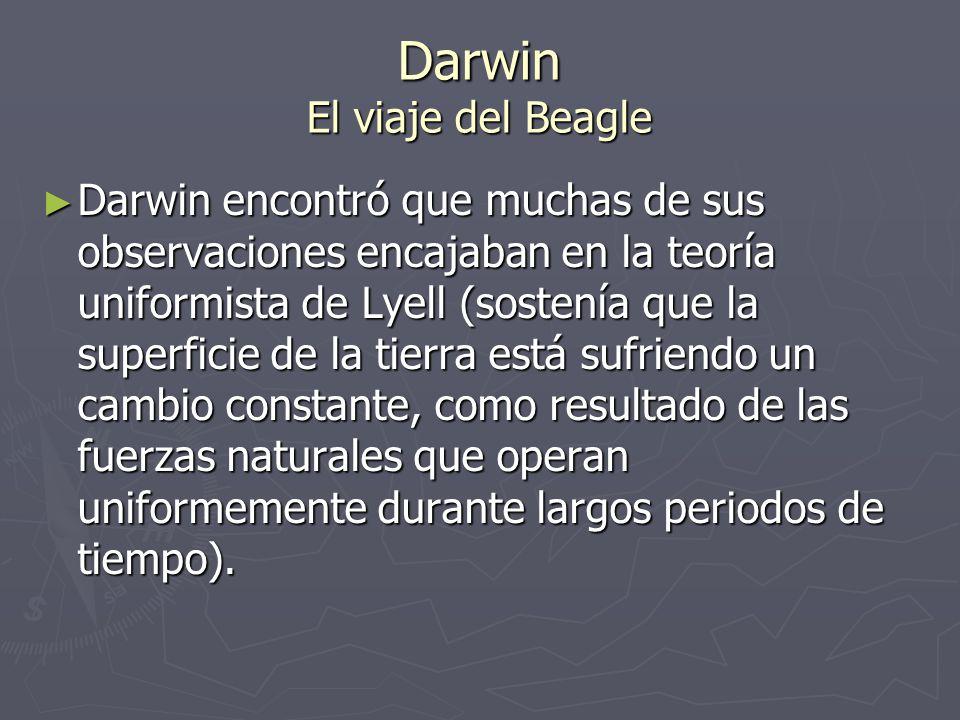 Darwin El viaje del Beagle Darwin encontró que muchas de sus observaciones encajaban en la teoría uniformista de Lyell (sostenía que la superficie de