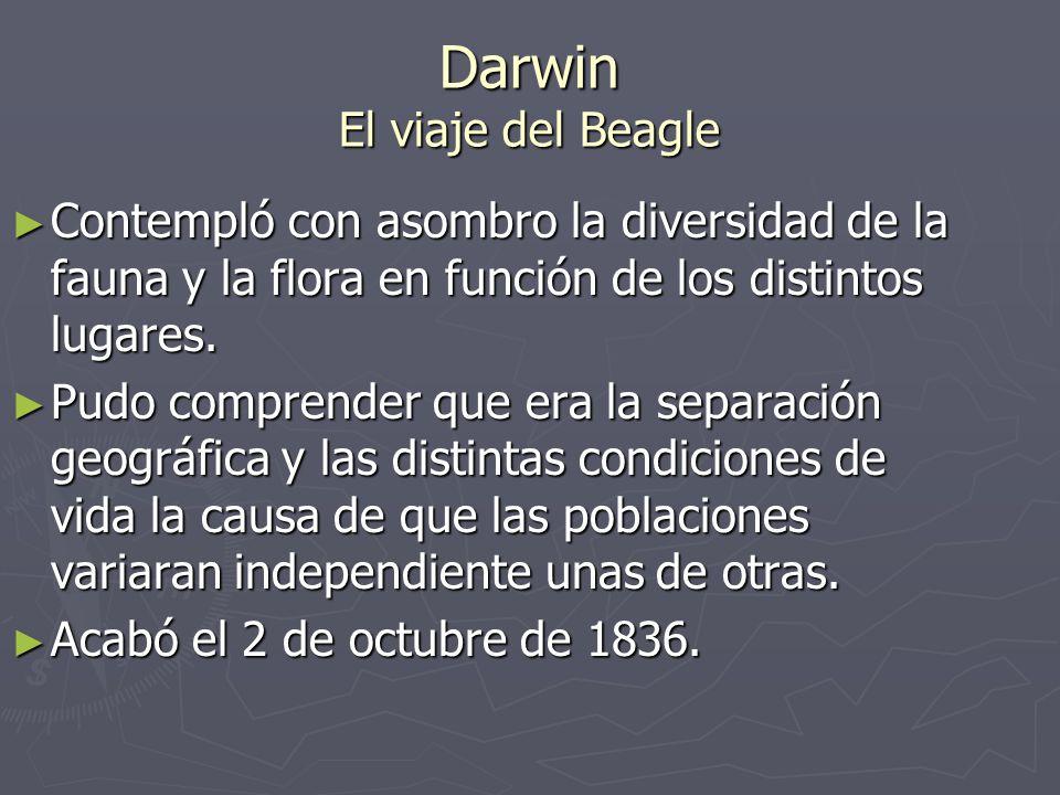 Darwin El viaje del Beagle Contempló con asombro la diversidad de la fauna y la flora en función de los distintos lugares. Contempló con asombro la di