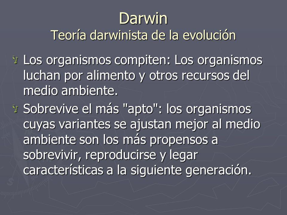Darwin Teoría darwinista de la evolución Los organismos compiten: Los organismos luchan por alimento y otros recursos del medio ambiente. Los organism