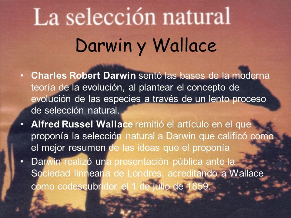 Darwin y Wallace Charles Robert Darwin sentó las bases de la moderna teoría de la evolución, al plantear el concepto de evolución de las especies a tr