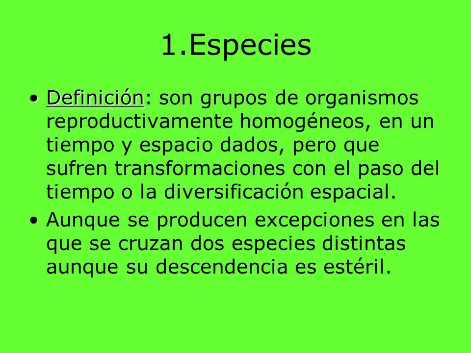 1.Especies DefiniciónDefinición: son grupos de organismos reproductivamente homogéneos, en un tiempo y espacio dados, pero que sufren transformaciones