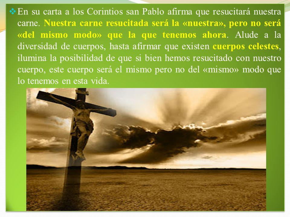 2. CREEMOS EN LA RESURRECCION DE LA CARNE. Cuando la teología católica trata de dar razón de la fe, lo primero que elimina es el absurdo; después mues