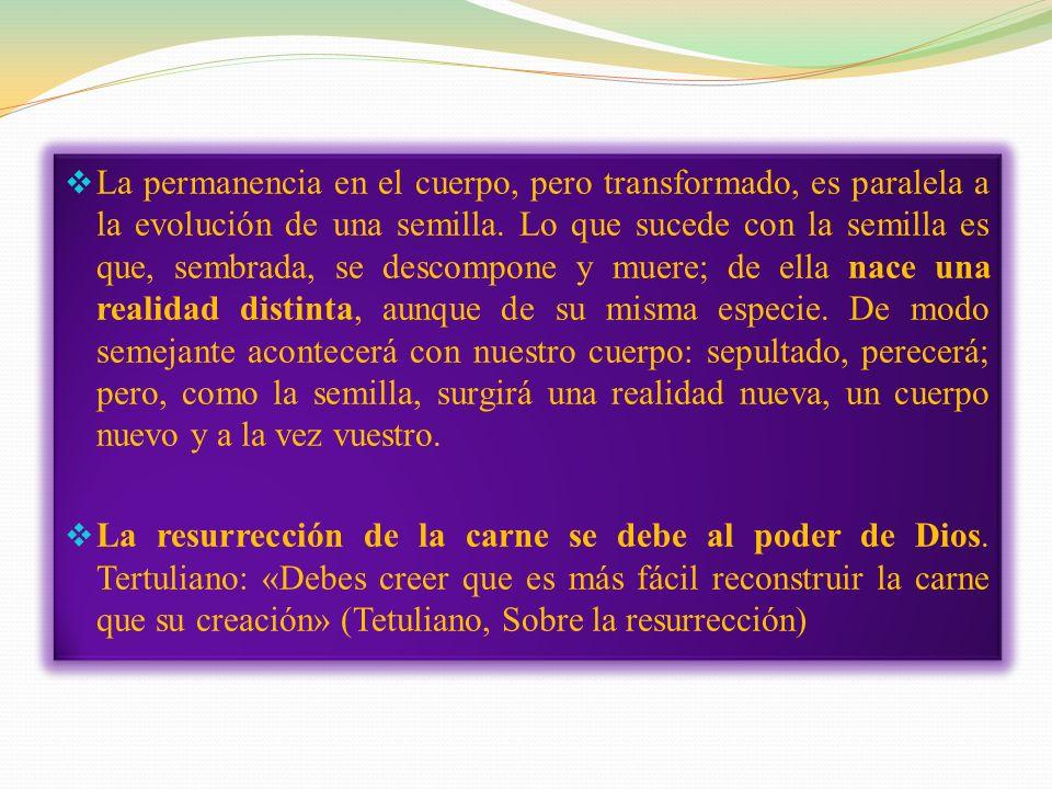 En su carta a los Corintios san Pablo afirma que resucitará nuestra carne. Nuestra carne resucitada será la «nuestra», pero no será «del mismo modo» q