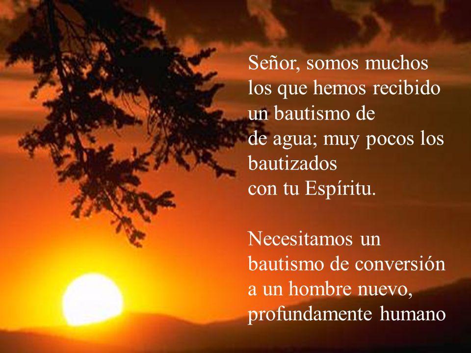 Señor, somos muchos los que hemos recibido un bautismo de de agua; muy pocos los bautizados con tu Espíritu. Necesitamos un bautismo de conversión a u