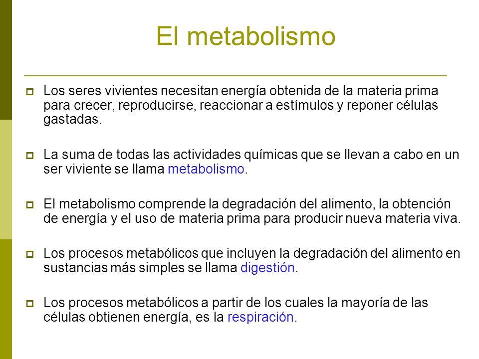 La homeostasis es la regulación balanceada de los procesos metabólicos con los cuales los organismos mantienen condiciones adecuadas de vida.