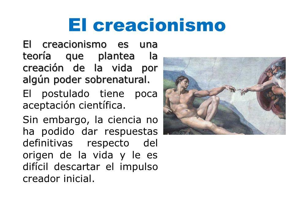 El creacionismo El creacionismo es una teoría que plantea la creación de la vida por algún poder sobrenatural. El postulado tiene poca aceptación cien