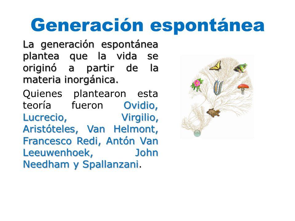 Generación espontánea La generación espontánea plantea que la vida se originó a partir de la materia inorgánica. Ovidio, Lucrecio, Virgilio, Aristóte