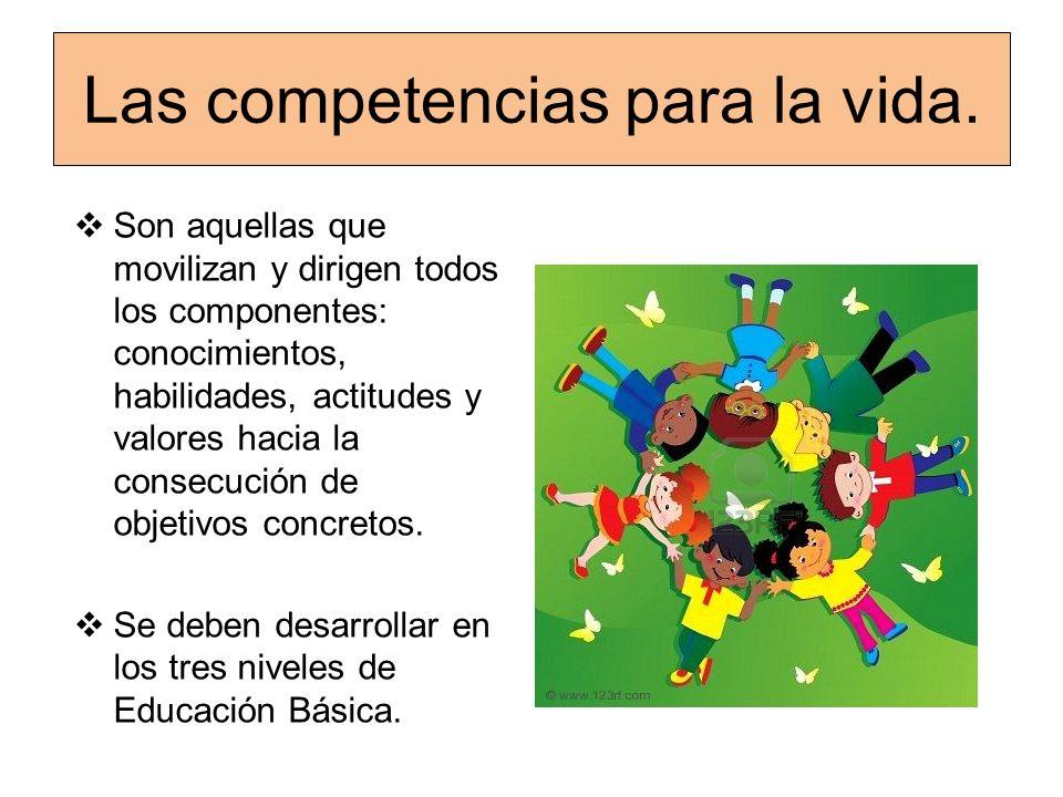 Las competencias para la vida. Son aquellas que movilizan y dirigen todos los componentes: conocimientos, habilidades, actitudes y valores hacia la co
