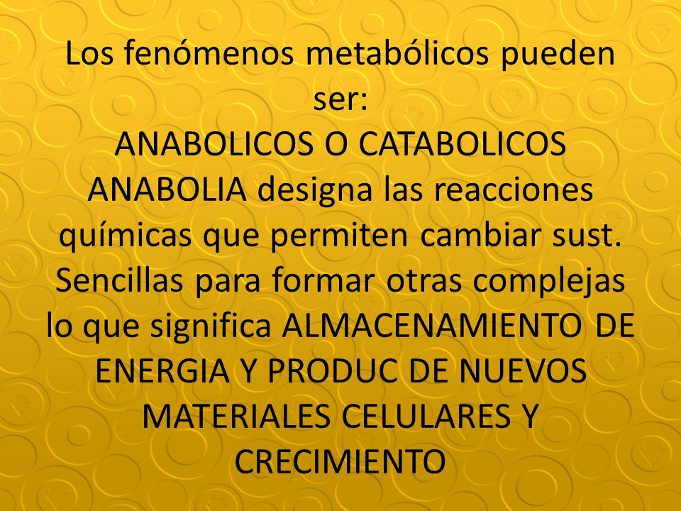 Los fenómenos metabólicos pueden ser: ANABOLICOS O CATABOLICOS ANABOLIA designa las reacciones químicas que permiten cambiar sust. Sencillas para form