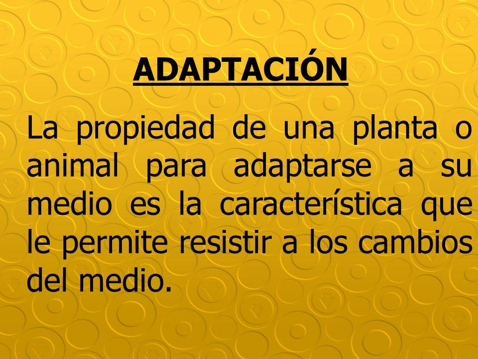 ADAPTACIÓN La propiedad de una planta o animal para adaptarse a su medio es la característica que le permite resistir a los cambios del medio.