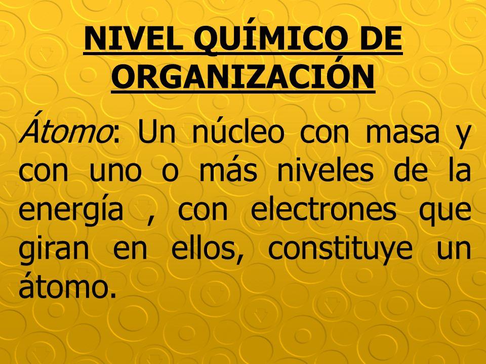 NIVEL QUÍMICO DE ORGANIZACIÓN Átomo: Un núcleo con masa y con uno o más niveles de la energía, con electrones que giran en ellos, constituye un átomo.
