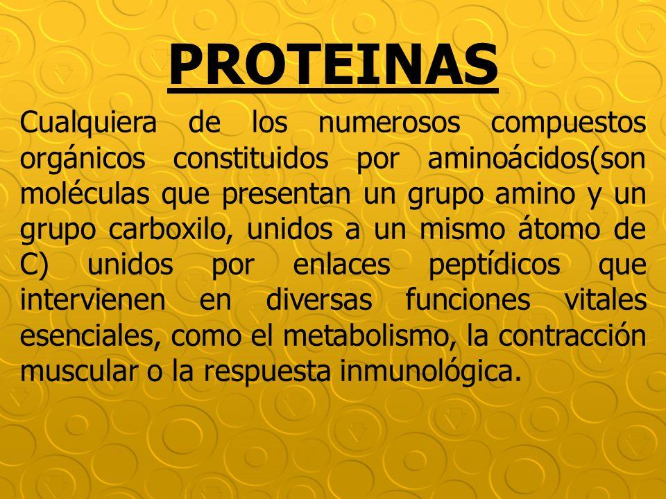 PROTEINAS Cualquiera de los numerosos compuestos orgánicos constituidos por aminoácidos(son moléculas que presentan un grupo amino y un grupo carboxil