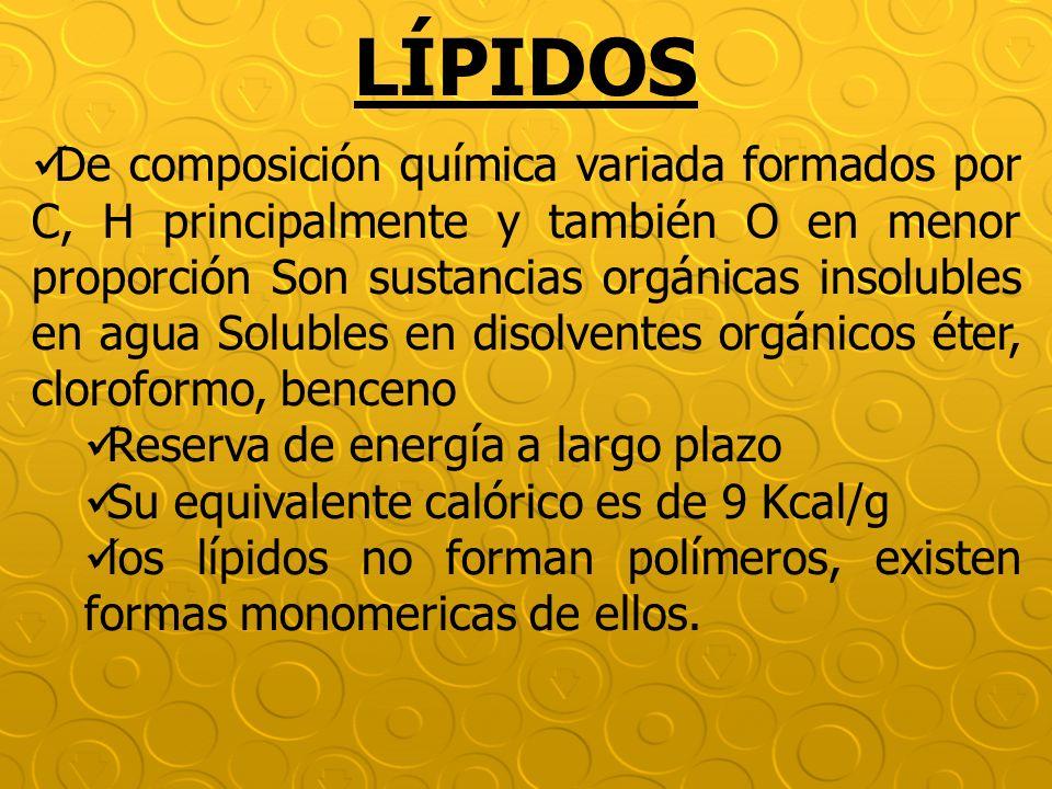 LÍPIDOS De composición química variada formados por C, H principalmente y también O en menor proporción Son sustancias orgánicas insolubles en agua So