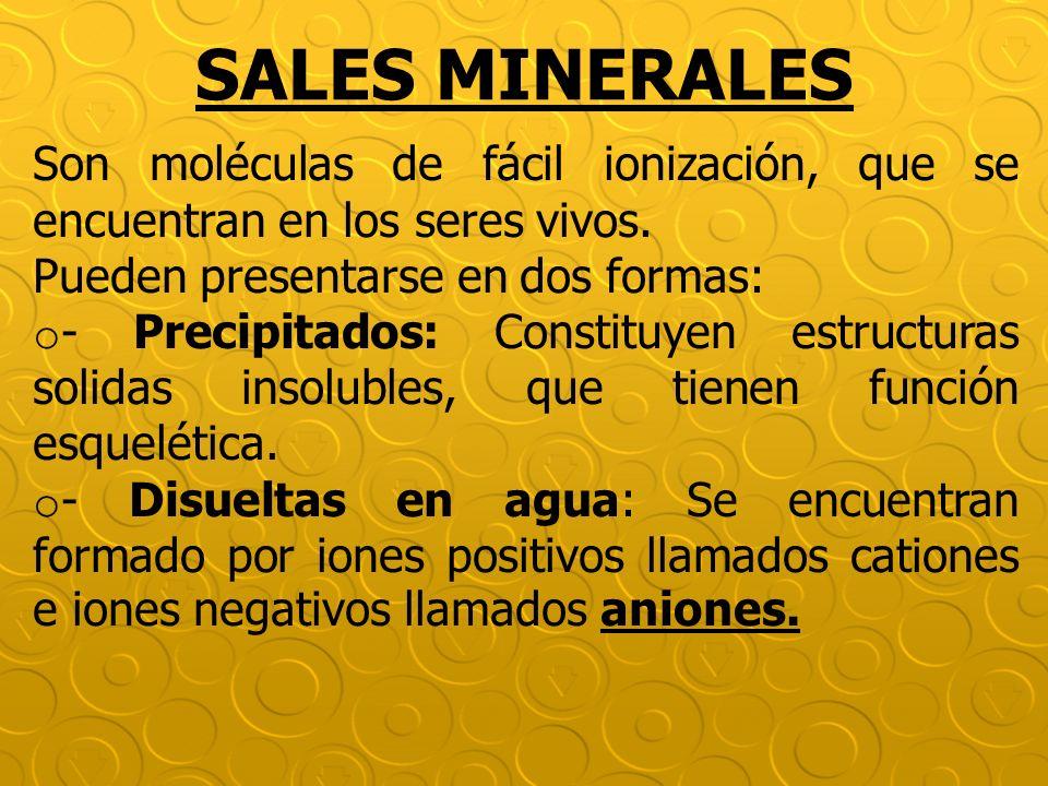 SALES MINERALES Son moléculas de fácil ionización, que se encuentran en los seres vivos. Pueden presentarse en dos formas: o - Precipitados: Constituy
