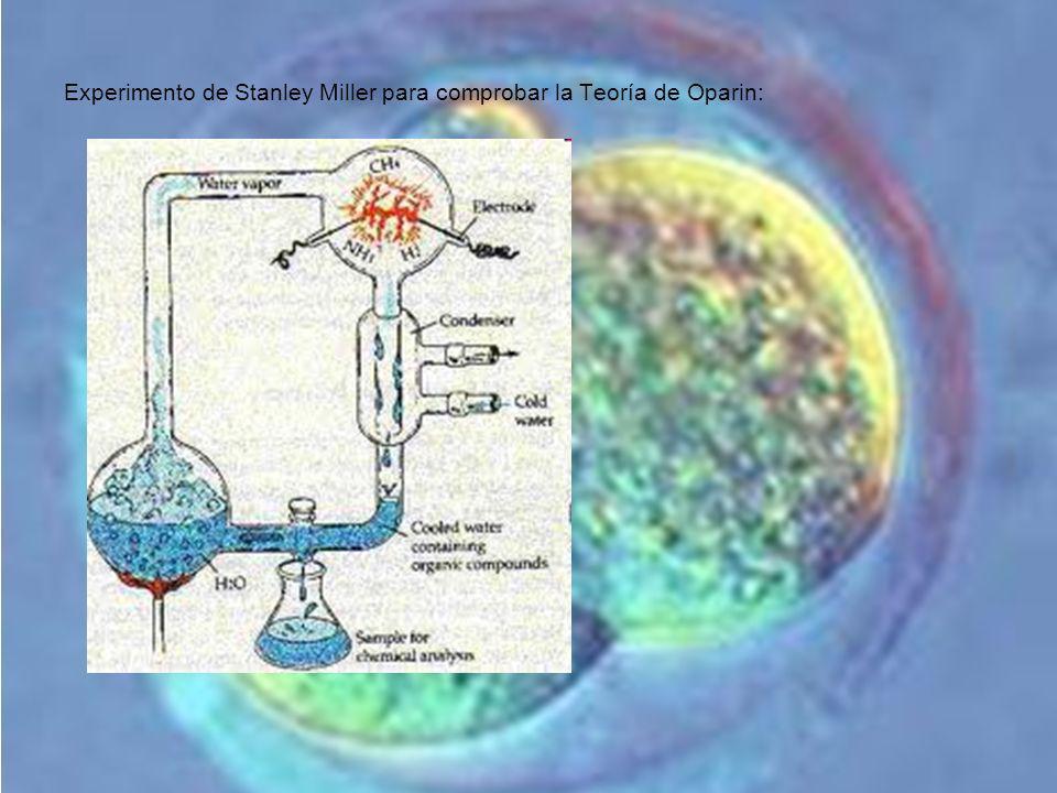 Experimento de Stanley Miller para comprobar la Teoría de Oparin: