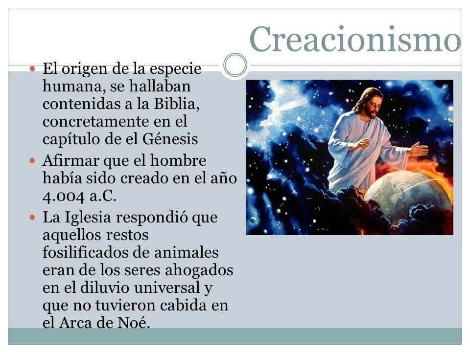 Creacionismo El origen de la especie humana, se hallaban contenidas a la Biblia, concretamente en el capítulo de el Génesis Afirmar que el hombre habí