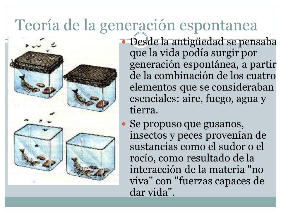 Teoría de la generación espontanea Desde la antigüedad se pensaba que la vida podía surgir por generación espontánea, a partir de la combinación de lo