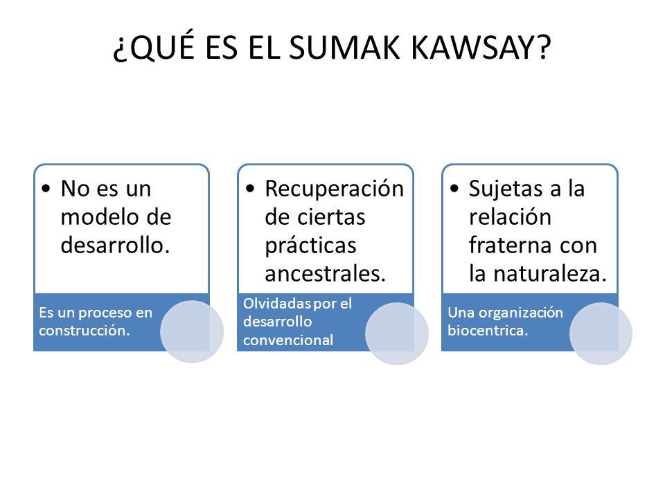 ¿QUÉ ES EL SUMAK KAWSAY.No es un modelo de desarrollo.