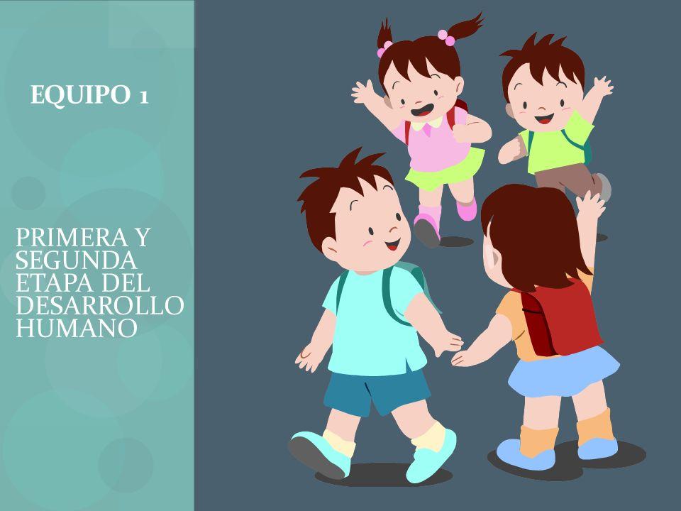 1ª.Fase de la infancia o período de bebé. En esta 1ª.