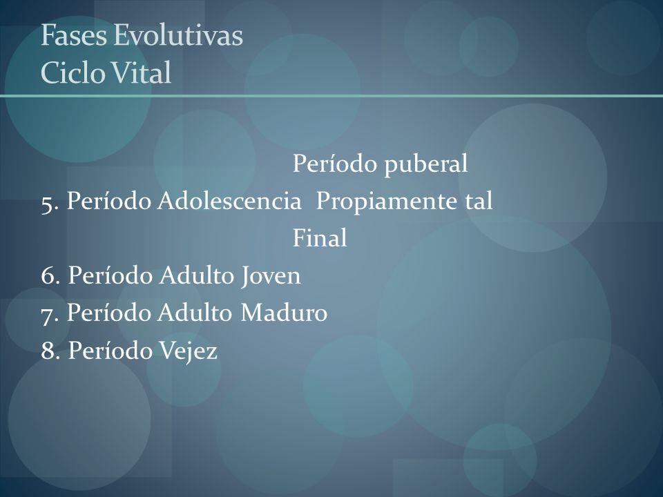 Fases Evolutivas Ciclo Vital Período puberal 5. Período Adolescencia Propiamente tal Final 6. Período Adulto Joven 7. Período Adulto Maduro 8. Período