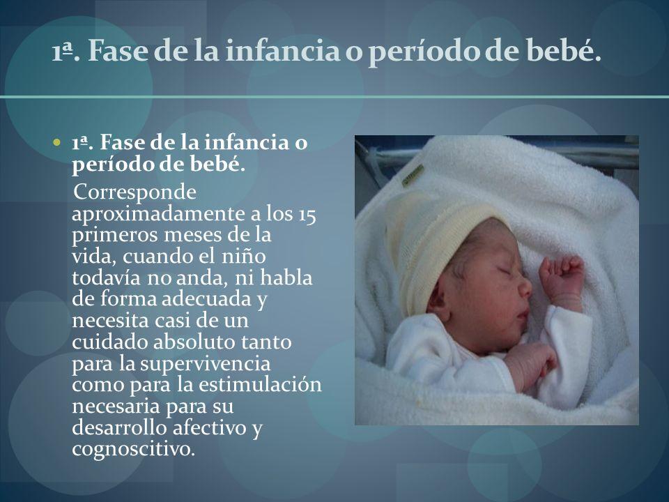 1ª. Fase de la infancia o período de bebé. Corresponde aproximadamente a los 15 primeros meses de la vida, cuando el niño todavía no anda, ni habla de