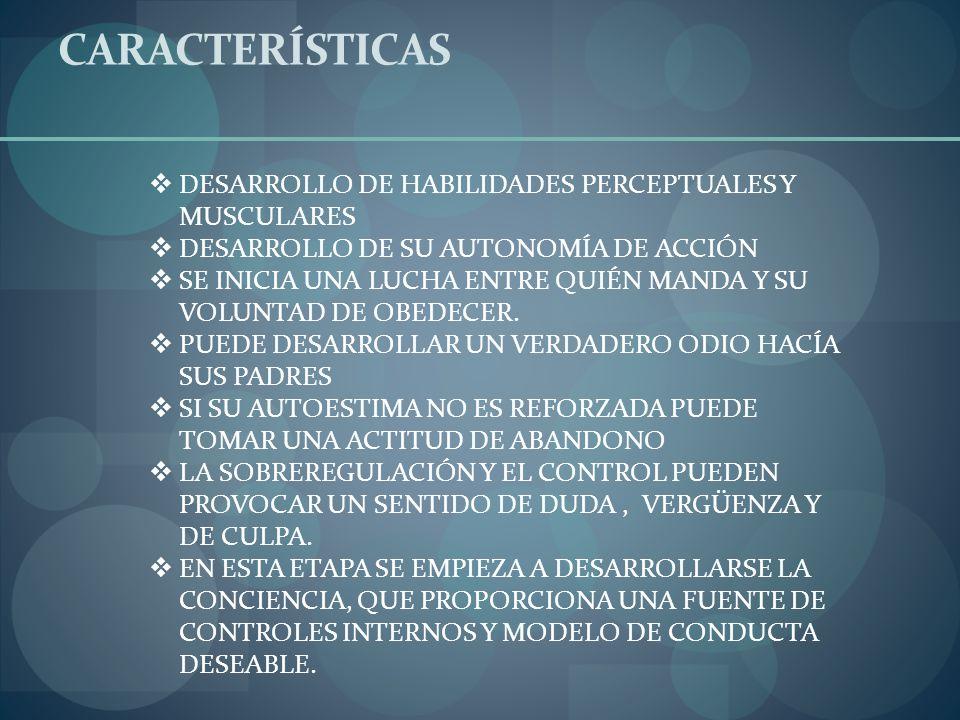 CARACTERÍSTICAS DESARROLLO DE HABILIDADES PERCEPTUALES Y MUSCULARES DESARROLLO DE SU AUTONOMÍA DE ACCIÓN SE INICIA UNA LUCHA ENTRE QUIÉN MANDA Y SU VO