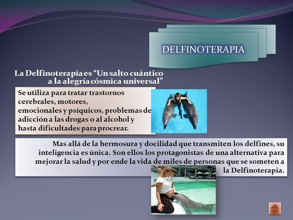 La Delfinoterapia es Un salto cuántico a la alegría cósmica universal Se utiliza para tratar trastornos cerebrales, motores, emocionales y psíquicos, problemas de adicción a las drogas o al alcohol y hasta dificultades para procrear.