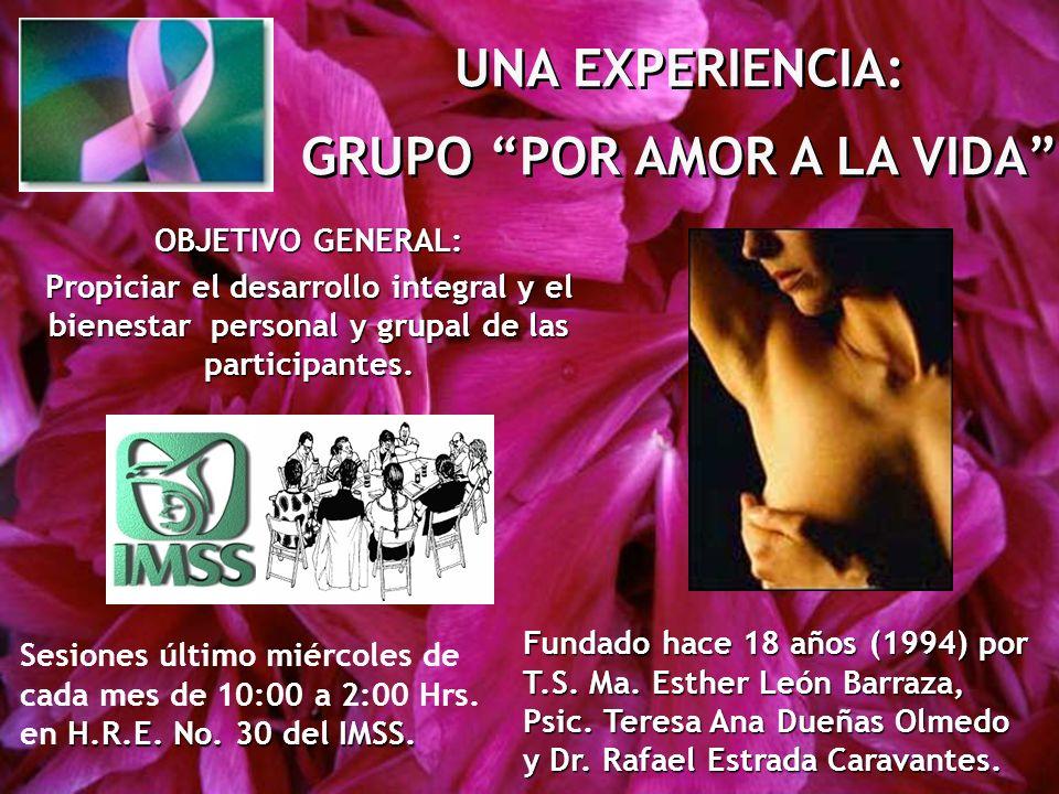 UNA EXPERIENCIA: GRUPO POR AMOR A LA VIDA UNA EXPERIENCIA: GRUPO POR AMOR A LA VIDA Fundado hace 18 años (1994) por T.S. Ma. Esther León Barraza, Psic