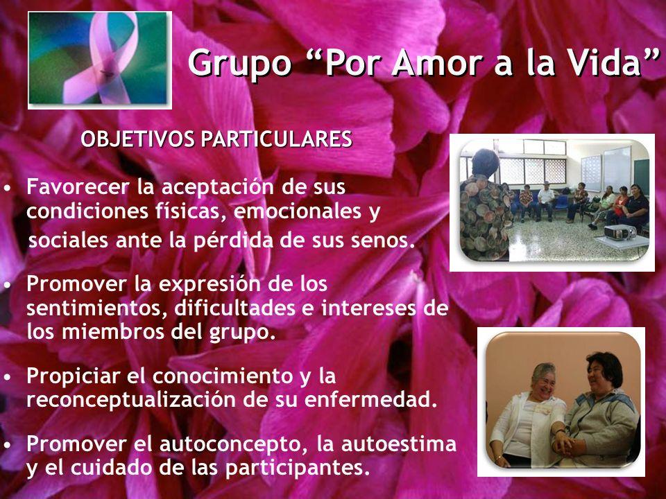 Grupo Por Amor a la Vida OBJETIVOS PARTICULARES Favorecer la aceptación de sus condiciones físicas, emocionales y sociales ante la pérdida de sus senos.